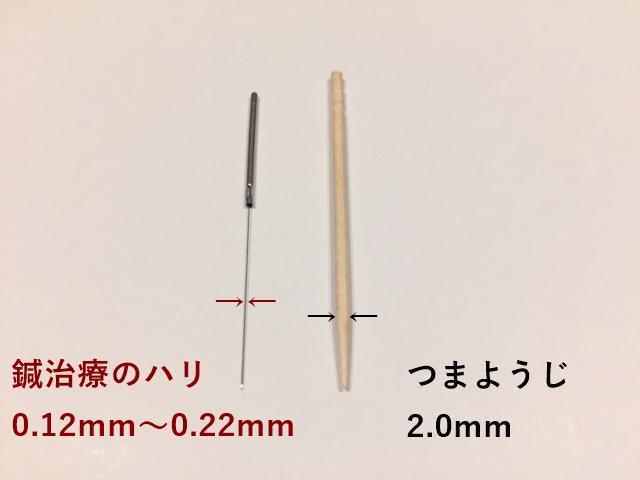 鍼と爪楊枝 画像